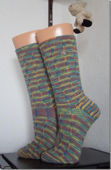 2012_01 Socke Jeck kunterbunt (2)