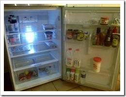 fridge 001
