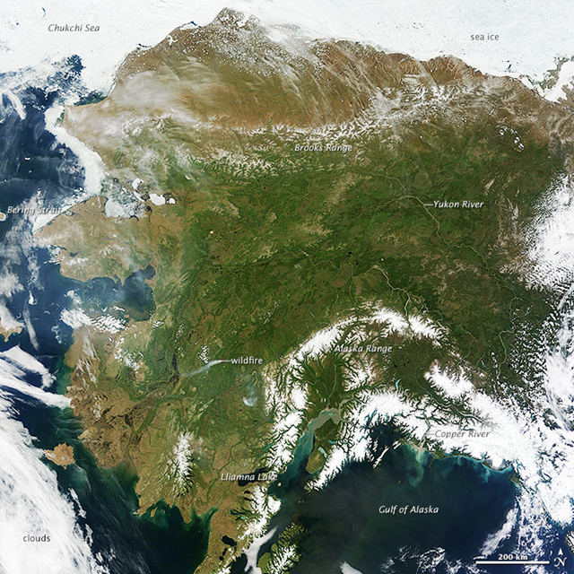 On 17 June 2013, NASA's Terra satellite acquired this rare, nearly cloud-free view of the state of Alaska. The same ridge of high pressure that cleared Alaska's skies also brought stifling temperatures to many areas accustomed to chilly June days. Talkeetna, a town about 100 miles north of Anchorage, saw temperatures reach 96°F (36°C) on 17 June 2013. Other towns in southern Alaska set all-time record highs, including Cordova, Valez, and Seward. The high temperatures also helped fuel wildfires and hastened the breakup of sea ice in the Chukchi Sea. Photo: Jeff Schmaltz / NASA