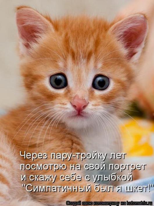 9783191f732af1c06a58fa2df46_prev