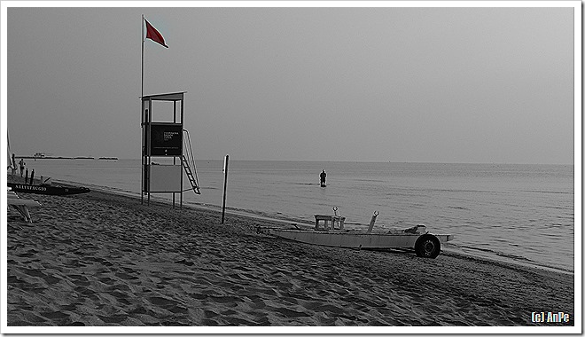 2013_04_15_SW-Fokus_P1000125