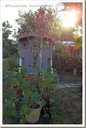 10-29-caravan-garden3
