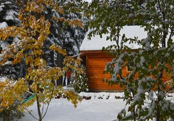 First snow_014