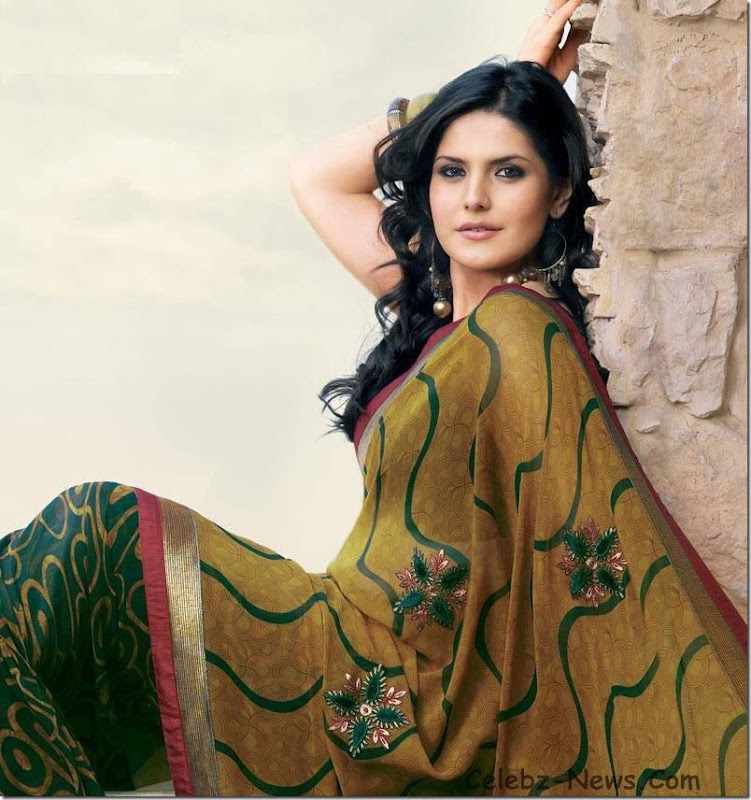 zarine-khan-saree-10