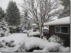 snowy Saturday 09