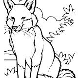 animaatjes-dieren-28117.jpg