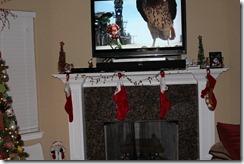 Christmas 2011 - B 376