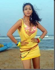 shreya _latest hot pic1