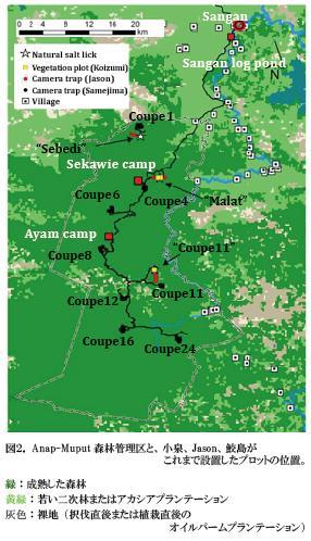 Samejima_NL_map2.jpg