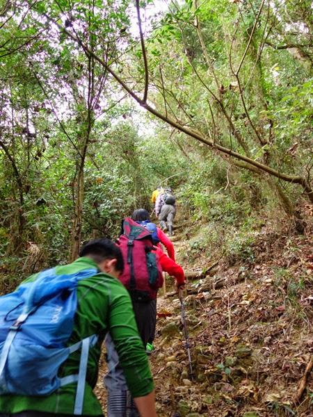 2013_0127 白賓山、真笠山、笠頂山 O走_006
