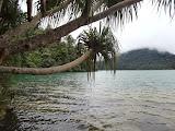 On the shore of Laut Tinggal lake, 1610 m on Gunung Malintang (Mykhailo Pavliuk, April 2013)