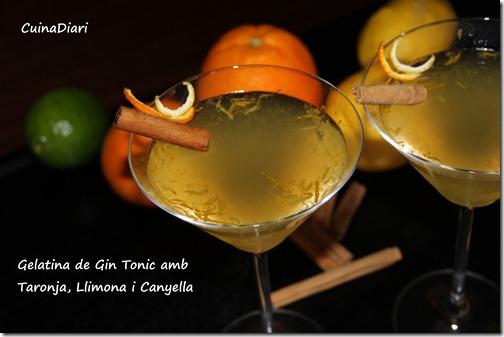 7-gin tonic jelly-ppal2