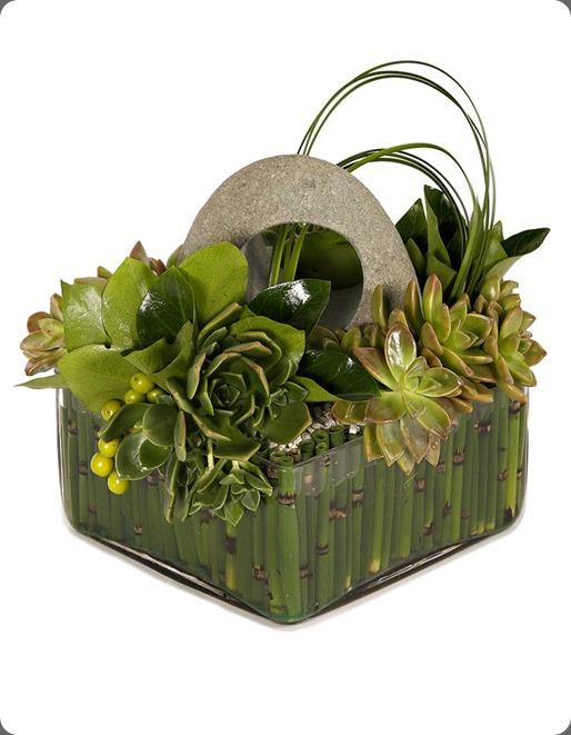 Succulent-Garden-copy1  eddie zaratsian