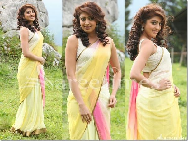 Praneetha_Tricolor_Georgette_Saree