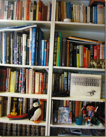 Bookshelf 1
