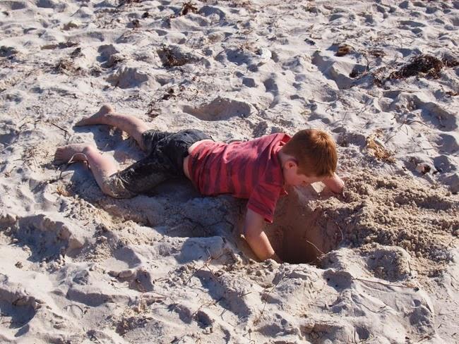 virtù - digging holes