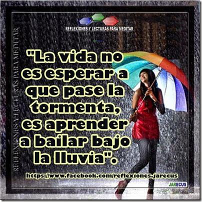 la-vida-no-es-esperar-que-pase-la-tormenta (3)