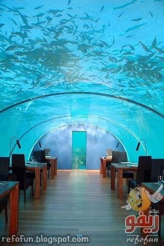 underwater-restaurant-refofun