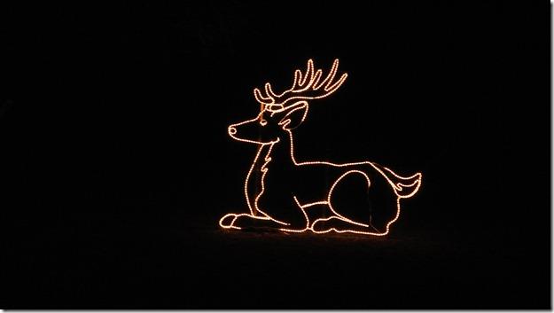 Prairie Lights 084