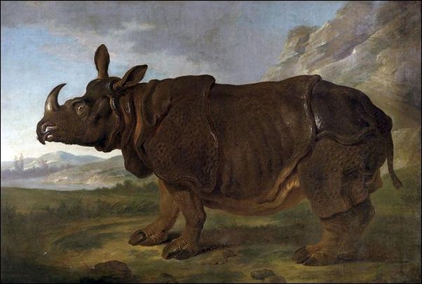 Oudry, Portrait du Rhinocéros Clara