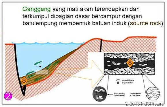 proses pembentukan minyak bumi 2