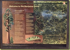 Mariposa Grove Map