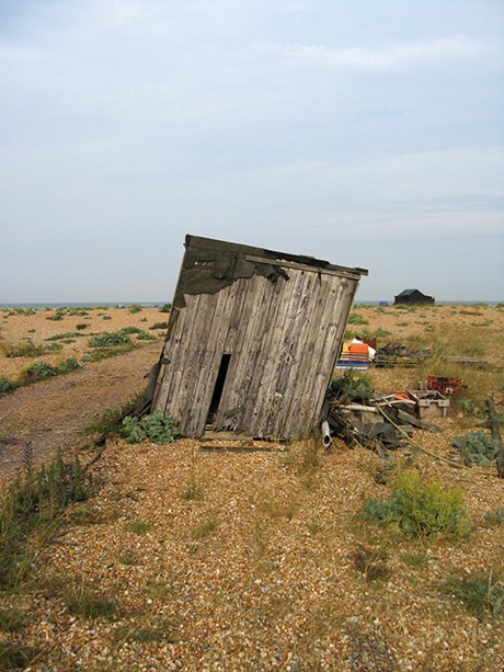Dungeness 03