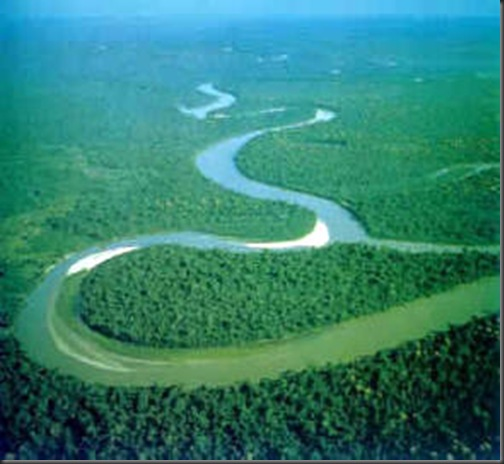 padurea-amazoniana