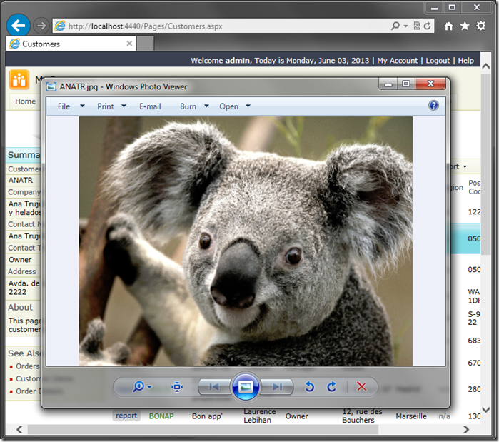 The koala image is displayed. The file name is inherited from the CustomerID.