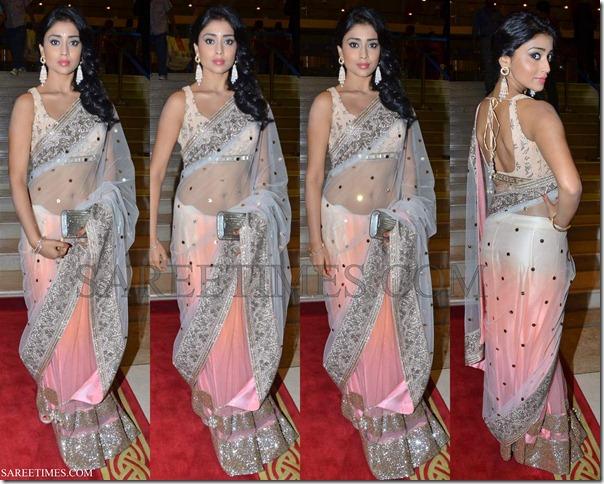 Shriya_Manish_Malhotra_Shimmer_Saree
