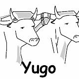 Yugo.jpg