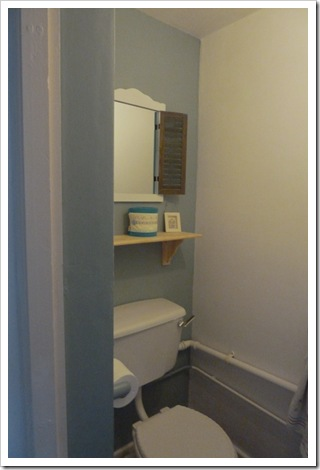 Bathroom Makeover (13)