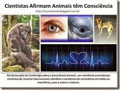 Cientistas-Afirmam-Animais-tm-Consci[1]