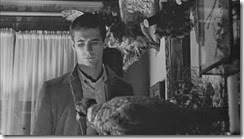 normanbates_taxidermy2