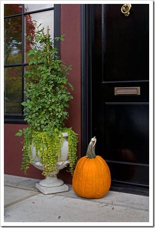 111104_Portland_Pearl_pumpkin