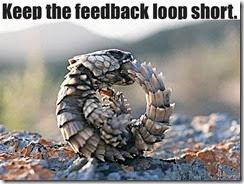 feedbackloopshort