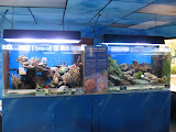 Reef exhibits