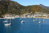 The Harbor - Picton, New Zealand
