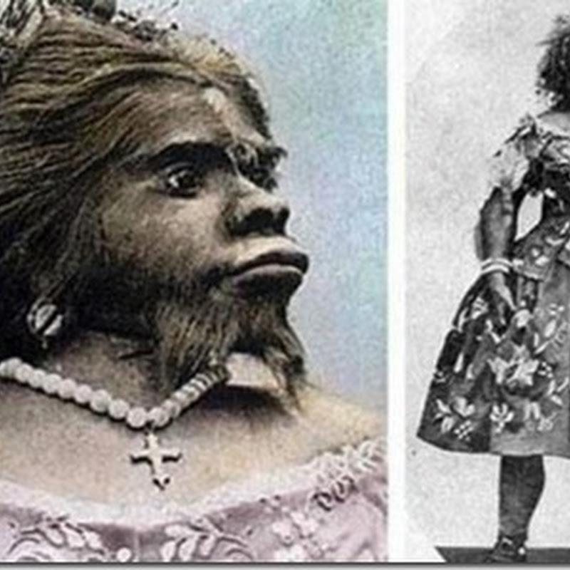russian ape woman lena nude