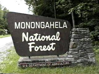 Monongahela National Forest entry sign. forestcamping.com