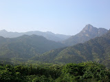The forested hills of Yakushima