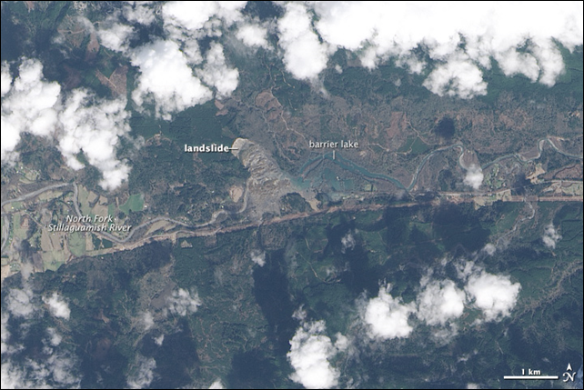 On 22 March 2014, a rainfall-triggered landslide near Oso, Washington, sent muddy debris spilling across the North Fork of the Stillaguamish River. The debris swamped numerous homes, resulting in the deaths of at least 24 people. The Landsat 8 satellite acquired this image of landslide debris and the barrier lake on 23 March 2014. Photo: Jesse Allen / U.S. Geological Survey