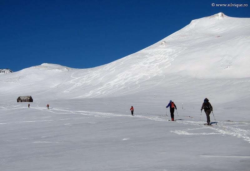 Schi de tura Sinaia-Moeciu