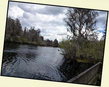05a - Boardwalk along Hillsborough River