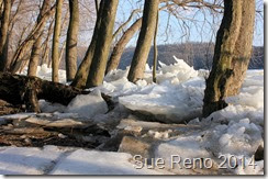 Susquehann River ice jam, by Sue Reno, Image 10