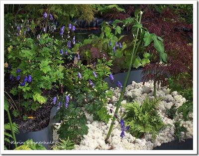 Vitmossagröntröttblått