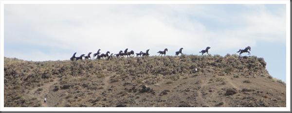 RT-02-Wild-Horse-01