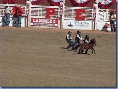 9516 Alberta Calgary - Calgary Stampede 100th Anniversary - Stampede Grandstand - Calgary Stampede Wild Pony Race