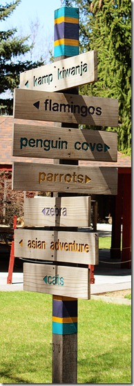 147 tautphaus park zoo