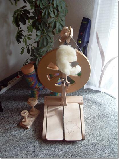 2011_08 Mein Kiwi kommt an (7)